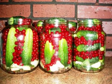 The best recipes of cucumbers for winter storage in the apartment